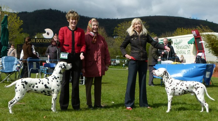 Wiggins receiving the Reserve Champion Certificate at WELKS